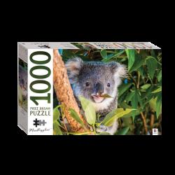 Mindbogglers 1000pce: Koala, Queensland